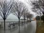 HRP - after winter rain